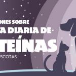 Recomendaciones sobre proteinas y grasas para mascotas